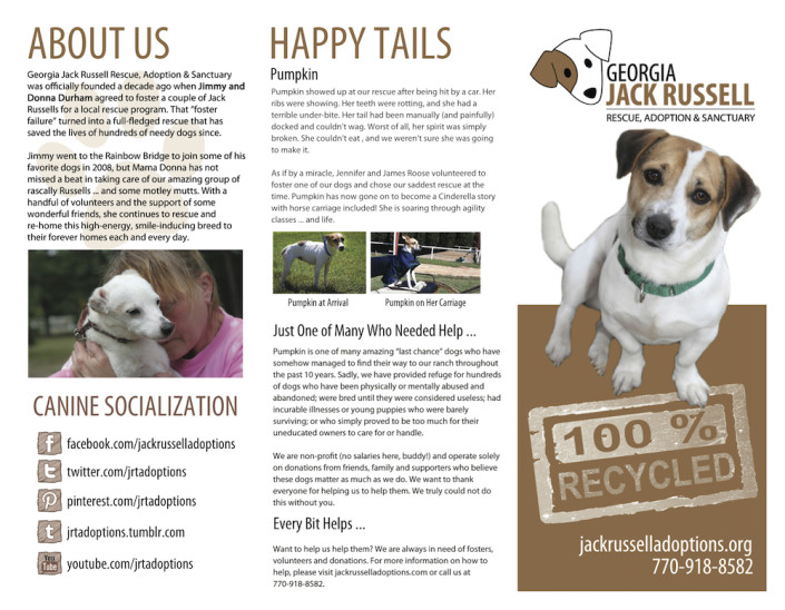 Jack Russell Rescue brochure