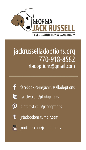 Jack Russell Rescue business card